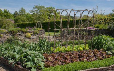 Intéressés par les jardins partagés ?